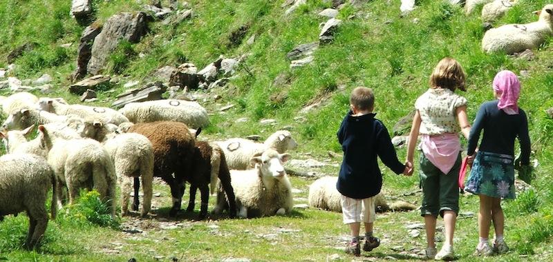 enfants-moutons